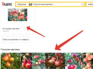 переход в Яндекс картинки